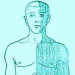 link to Neuro Symptoms website
